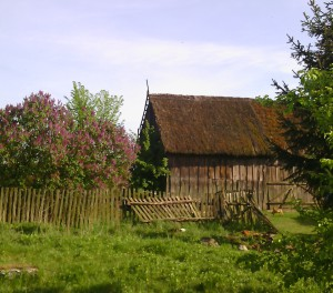 a thatched roof barn